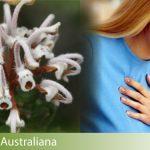 attacchi di panico rimedi naturali