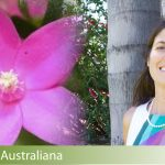 ansia-fiori-australiani