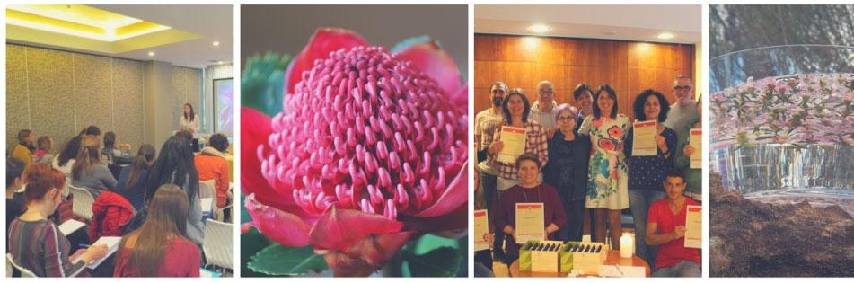 corso fiori australiani